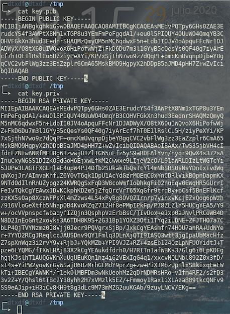 Leyendo las claves almacenadas en el disco con la aplicación cat